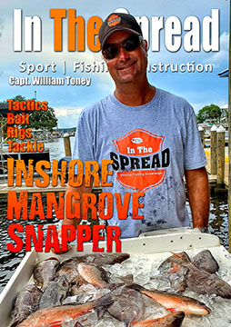 inshore mangrove snapper fishing william toney in the spread